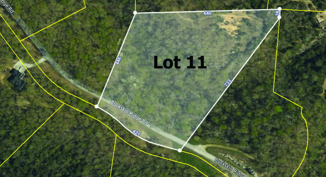 000 Buckskin Ridge, Highlandville, MO 65669 (MLS #60190721) :: Evan's Group LLC