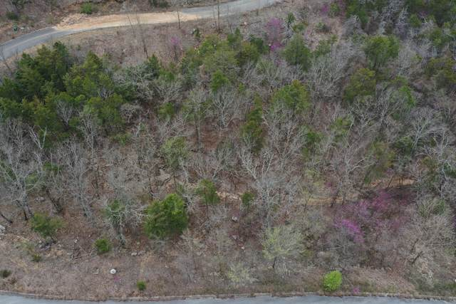 Lot 193 Emerald Pointe Phase 9, Hollister, MO 65672 (MLS #60190750) :: Clay & Clay Real Estate Team