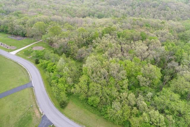 1334 N East Ridge Drive, Strafford, MO 65757 (MLS #60190908) :: Sue Carter Real Estate Group