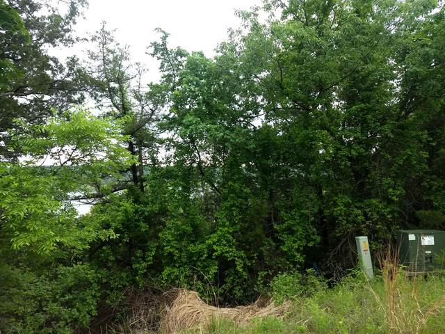 000 Shadow Ridge Court, Hollister, MO 65672 (MLS #60190995) :: Clay & Clay Real Estate Team