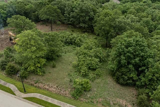201 Forest Oak Drive, Hollister, MO 65672 (MLS #60191171) :: Lakeland Realty, Inc.