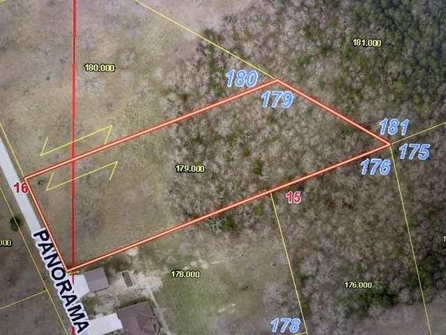 Lot 179 Panorama Drive, Cape Fair, MO 65624 (MLS #60191345) :: Lakeland Realty, Inc.