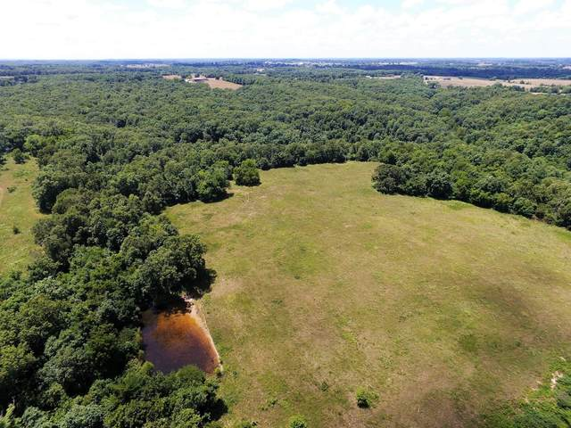 Tbd Spring Hill Road, Sparta, MO 65753 (MLS #60191631) :: Clay & Clay Real Estate Team