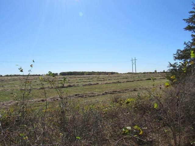000 Tbd State Highway 38, Marshfield, MO 65706 (MLS #60191965) :: Evan's Group LLC