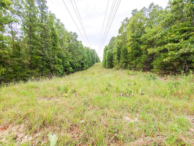 000 Wildwood Drive, Gainesville, MO 65655 (MLS #60192211) :: Lakeland Realty, Inc.