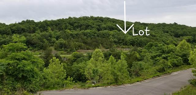 000 Slyer Circle, Hollister, MO 65672 (MLS #60192294) :: Clay & Clay Real Estate Team