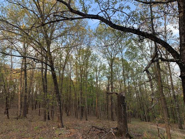 0000 Tbd County Road 333, Ava, MO 65608 (MLS #60192421) :: Clay & Clay Real Estate Team