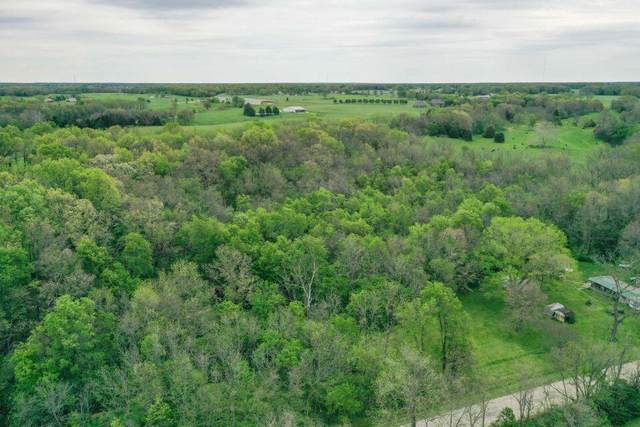 000 Henderson Rd Tract C & D, Rogersville, MO 65742 (MLS #60192605) :: Sue Carter Real Estate Group