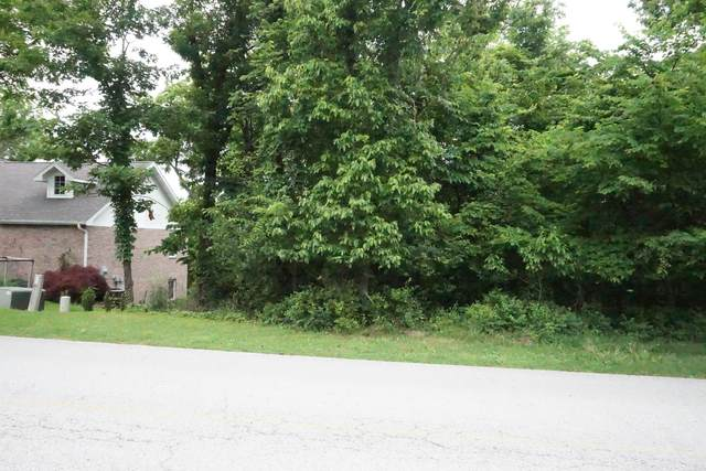 Lot 6 Skyview Drive, Branson, MO 65616 (MLS #60192642) :: Sue Carter Real Estate Group