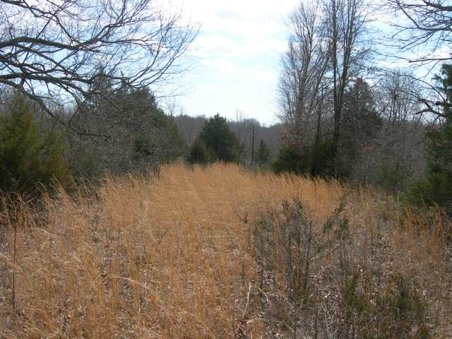 000 Lindsey Lane, Anderson, MO 64831 (MLS #60192679) :: Clay & Clay Real Estate Team