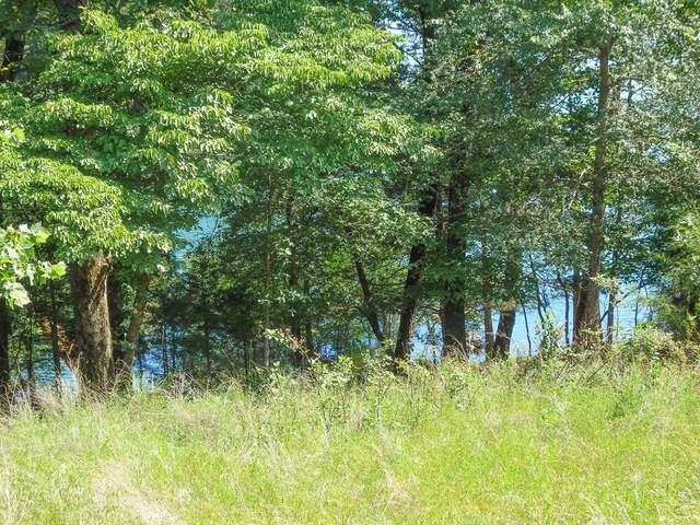 000 Lost Mine Road, Theodosia, MO 65761 (MLS #60192788) :: Lakeland Realty, Inc.