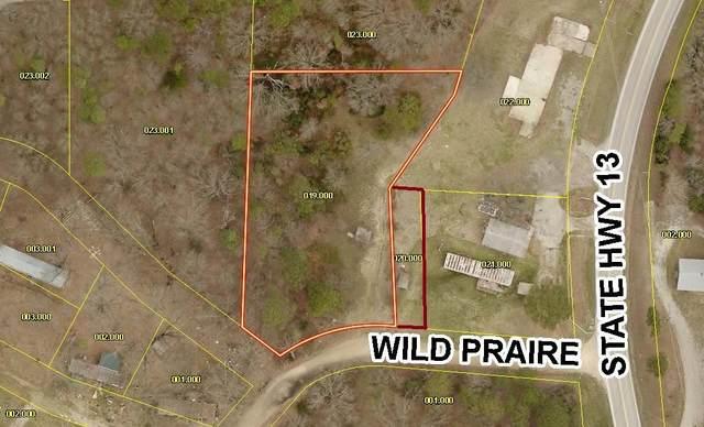 000 Wild Praire Lane, Lampe, MO 65681 (MLS #60192824) :: Evan's Group LLC