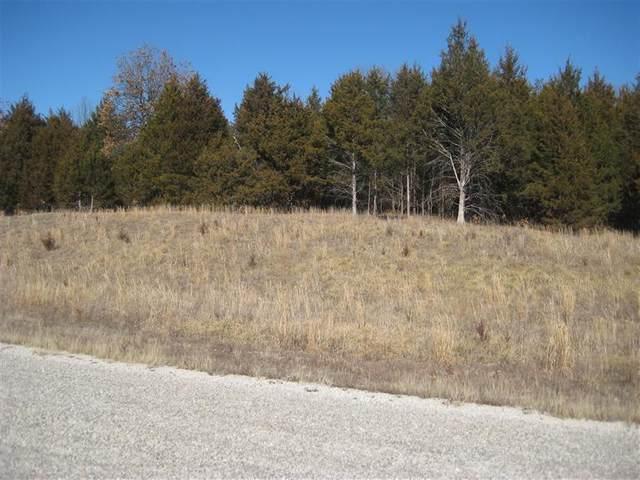 Lot 91 Niangua Ranch, Marshfield, MO 65706 (MLS #60192941) :: Evan's Group LLC