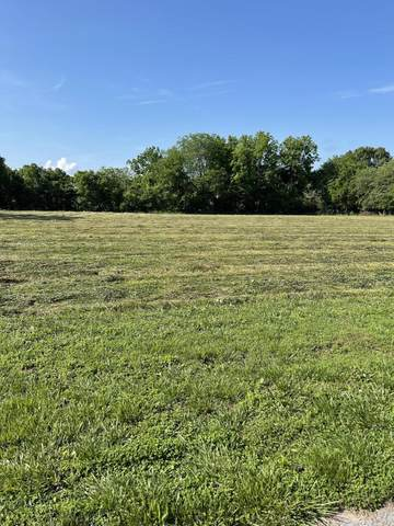 000 Golubski Avenue, Pierce City, MO 65723 (MLS #60193070) :: Lakeland Realty, Inc.