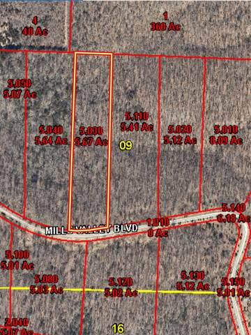 Lot 37 Niangua Ranch, Marshfield, MO 65706 (MLS #60193078) :: Evan's Group LLC