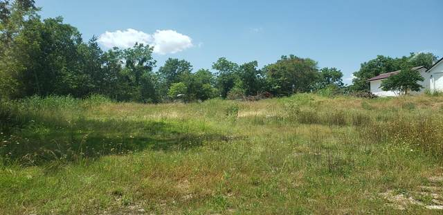 Lot 4 Stormy Point Road, Branson, MO 65616 (MLS #60193124) :: Clay & Clay Real Estate Team