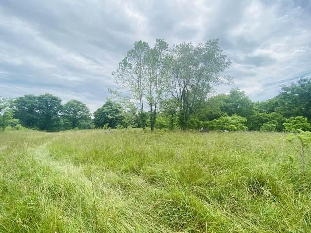 1759 Patterson Creek Road, Anderson, MO 64831 (MLS #60193234) :: Clay & Clay Real Estate Team