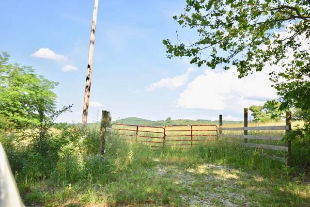 Tbd-84 Acres Flat Creek Road, Cape Fair, MO 65624 (MLS #60193235) :: Clay & Clay Real Estate Team
