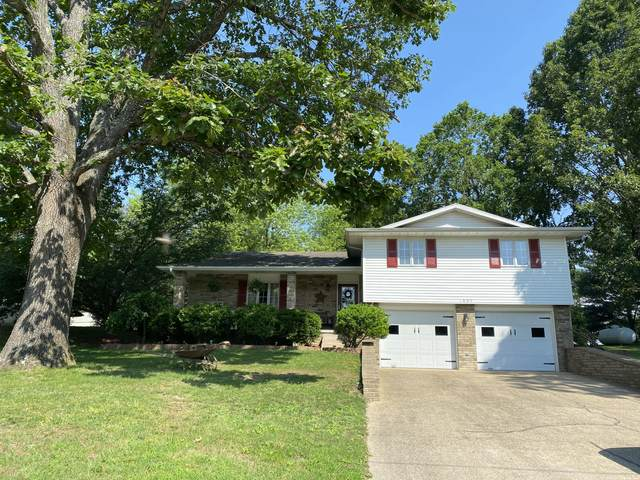 1805 Sherwood Lane, Ava, MO 65608 (MLS #60193291) :: Clay & Clay Real Estate Team