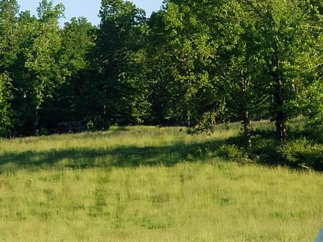 000 Finley Falls Road, Seymour, MO 65746 (MLS #60193292) :: Sue Carter Real Estate Group