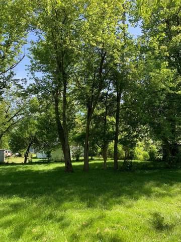 213 N Peightel Street, Seymour, MO 65746 (MLS #60193371) :: Sue Carter Real Estate Group