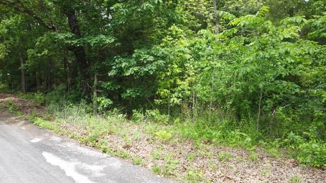 723 Miners Trail Lot 14, Crane, MO 65633 (MLS #60193385) :: Winans - Lee Team | Keller Williams Tri-Lakes