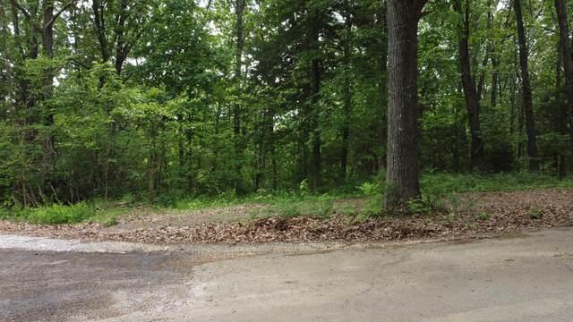 723 Miners Trail Lot 16, Crane, MO 65633 (MLS #60193387) :: Winans - Lee Team | Keller Williams Tri-Lakes