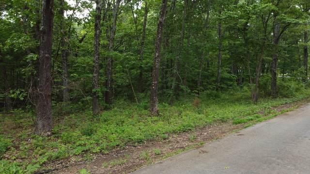 723 Miners Trail Lot 6, Crane, MO 65633 (MLS #60193388) :: Winans - Lee Team | Keller Williams Tri-Lakes