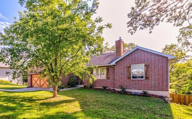 185 Old Meadow Lane, Branson, MO 65616 (MLS #60193401) :: Sue Carter Real Estate Group