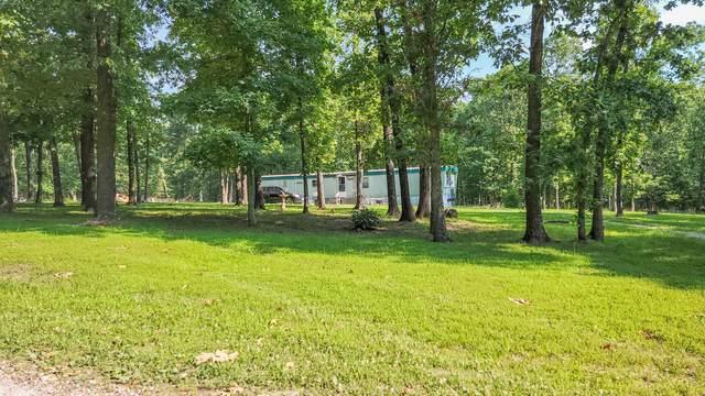 20295 Homestead Trail, Preston, MO 65732 (MLS #60193415) :: Lakeland Realty, Inc.