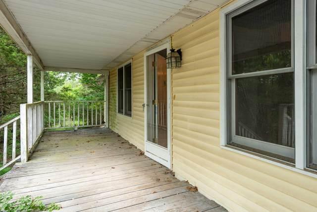 163 Boyd Avenue, Branson, MO 65616 (MLS #60193474) :: Sue Carter Real Estate Group