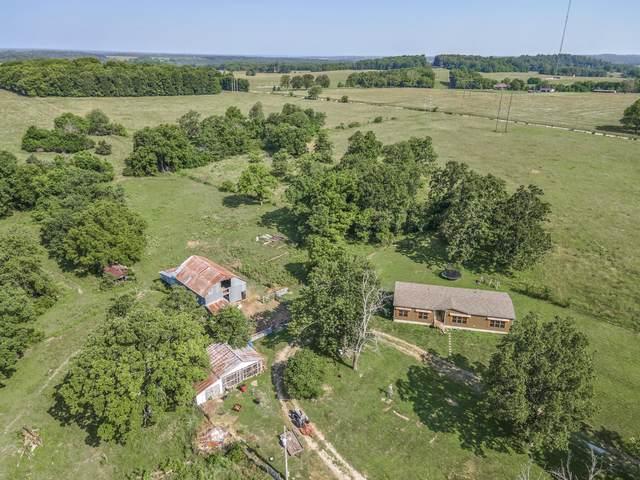 6977 N Farm Road 53, Ash Grove, MO 65604 (MLS #60193495) :: Sue Carter Real Estate Group