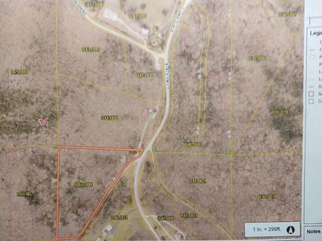 6513 Missouri Highway ''Y'', Galena, MO 65656 (MLS #60193563) :: Lakeland Realty, Inc.