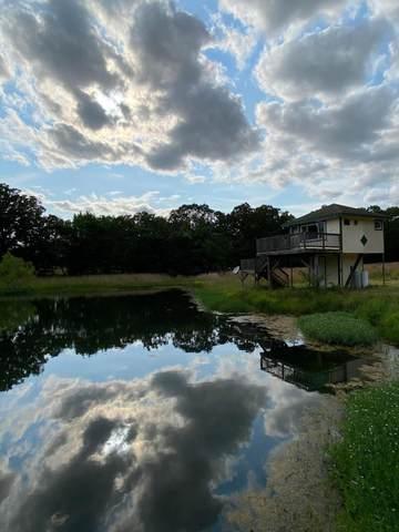 313 County Road 339, Alton, MO 65606 (MLS #60193675) :: Lakeland Realty, Inc.