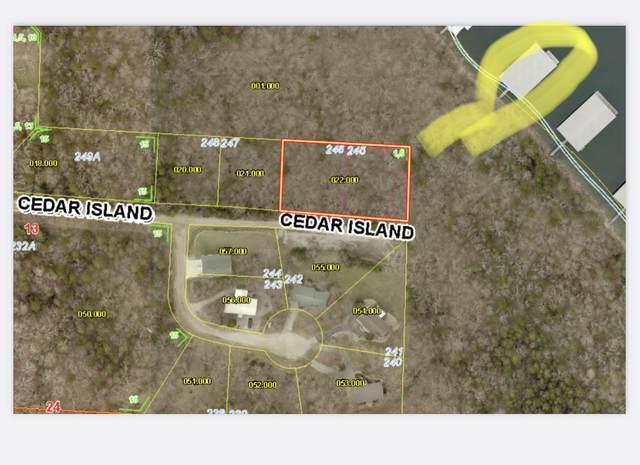 000 Cedar Island Road, Branson West, MO 65737 (MLS #60193760) :: Lakeland Realty, Inc.