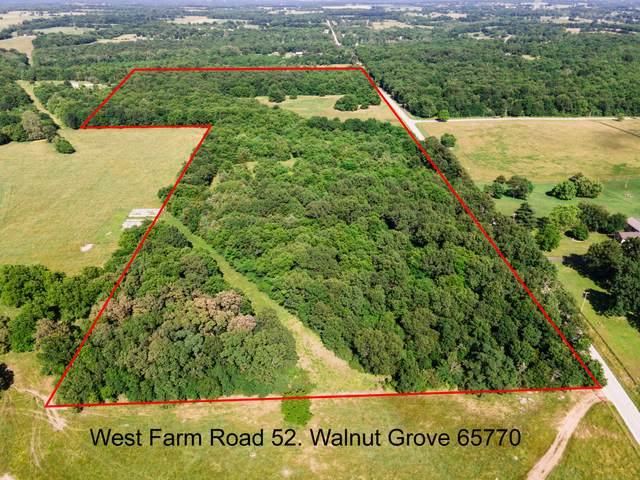 000 W Farm Road 52, Walnut Grove, MO 65770 (MLS #60193825) :: Lakeland Realty, Inc.