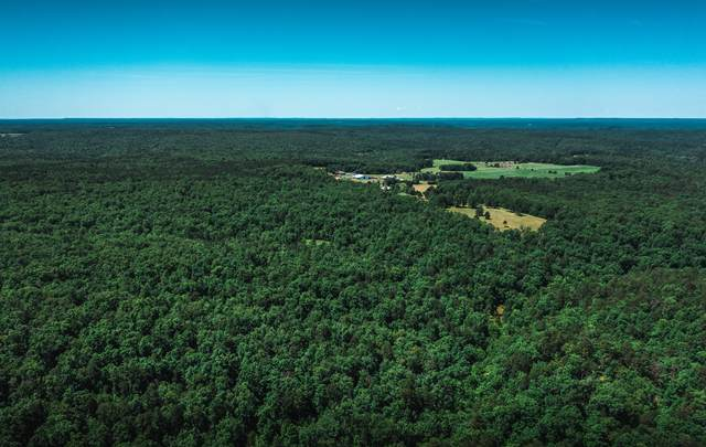 000 Hartville Rd, Licking, MO 65542 (MLS #60193848) :: Tucker Real Estate Group | EXP Realty
