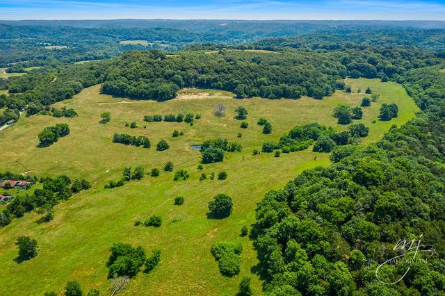 000 Little Missouri Road, Pineville, MO 64856 (MLS #60193978) :: Clay & Clay Real Estate Team