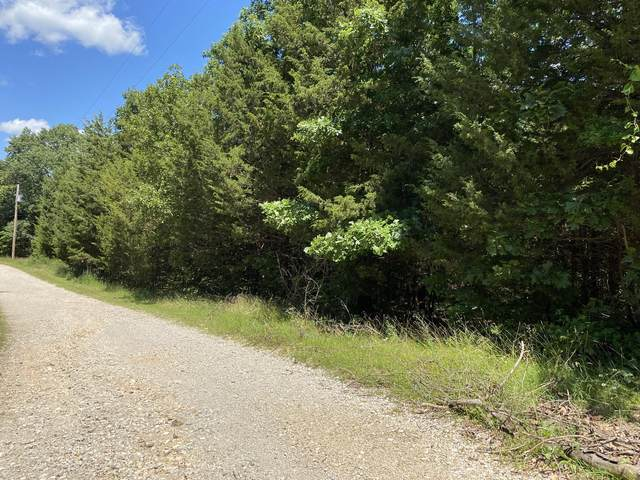 000 Boston Farms Road, Reeds Spring, MO 65737 (MLS #60194167) :: The Real Estate Riders