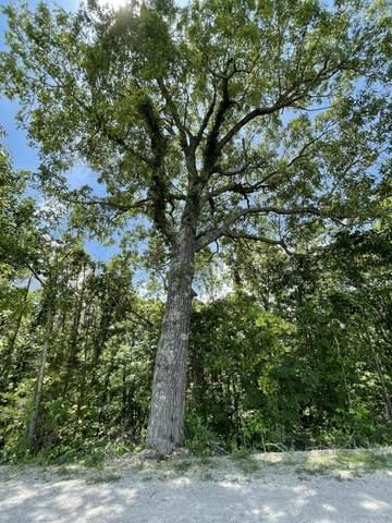 000 Rivermeade Loop, Galena, MO 65656 (MLS #60194392) :: Sue Carter Real Estate Group