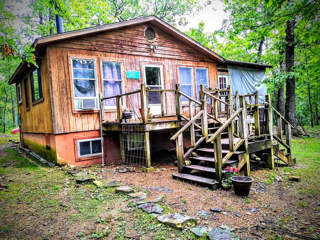 262 County Road 452, Berryville, AR 72616 (MLS #60194574) :: The Real Estate Riders