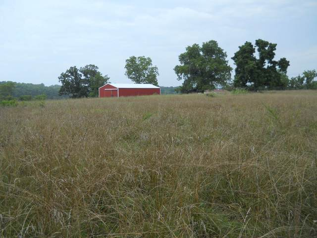 708 County Road 150, Oakland, AR 72660 (MLS #60194607) :: Sue Carter Real Estate Group