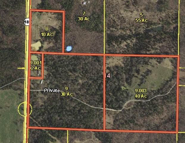 000 State Hwy 181, Willow Springs, MO 65793 (MLS #60195019) :: Team Real Estate - Springfield