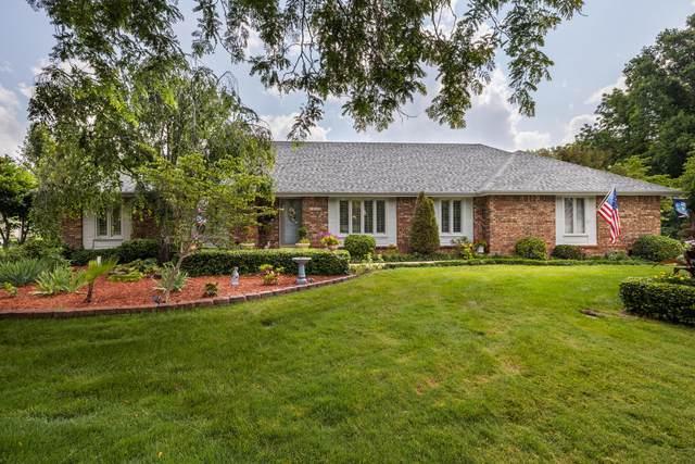 6439 E Skyline Drive, Springfield, MO 65809 (MLS #60195198) :: Team Real Estate - Springfield