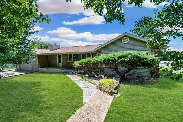63 Haystack Lane, Lampe, MO 65681 (MLS #60195368) :: The Real Estate Riders