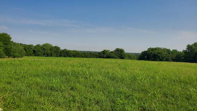 Tract 1 Farm Road 174, Rogersville, MO 65742 (MLS #60195472) :: Sue Carter Real Estate Group