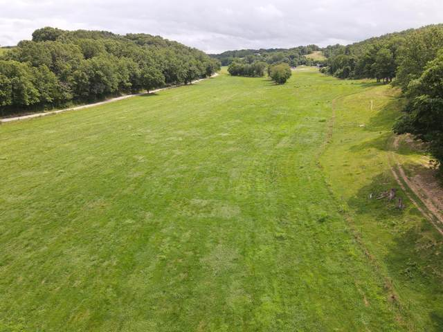 F68.20ac Bass Hollow Road, Galena, MO 65656 (MLS #60195688) :: United Country Real Estate