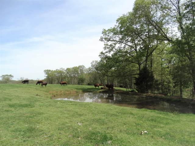 L68.20ac Bass Hollow Road, Galena, MO 65656 (MLS #60195690) :: United Country Real Estate
