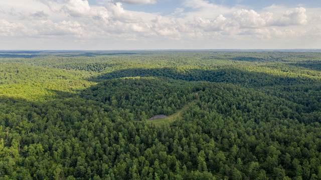 000 N Missouri 99, Birch Tree, MO 65438 (MLS #60195845) :: Winans - Lee Team | Keller Williams Tri-Lakes