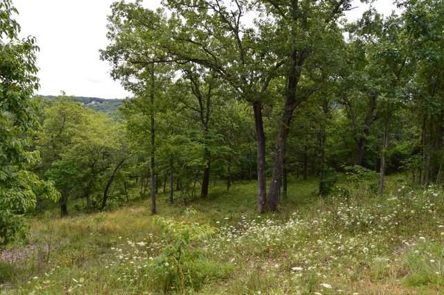 Tbd Mill Creek Shores Lane, Lampe, MO 65681 (MLS #60195948) :: Sue Carter Real Estate Group